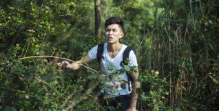 the-wild-1833566_1280