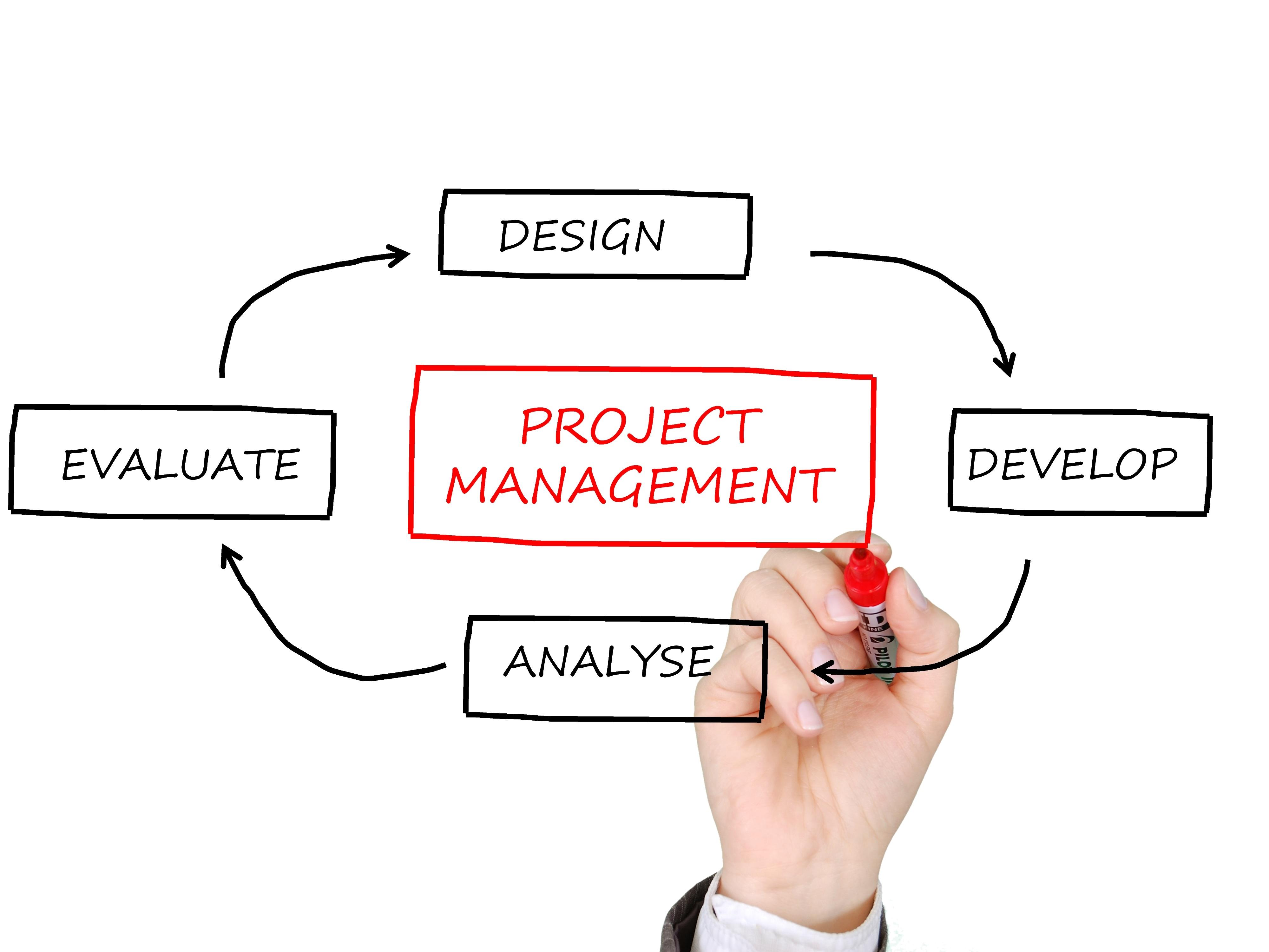 project manager degree