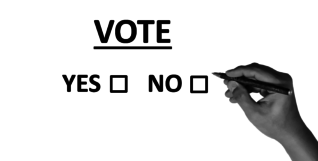 vote-2042580