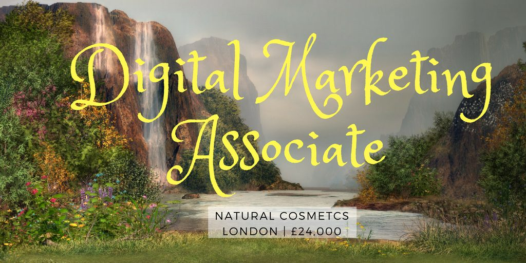 Digital Marketing Associate